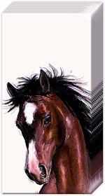 Pappersnäsdukar häst