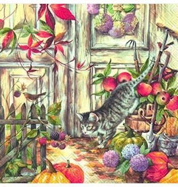 Servetter höst katt