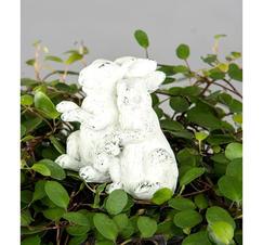 Kanin blomsticka vit