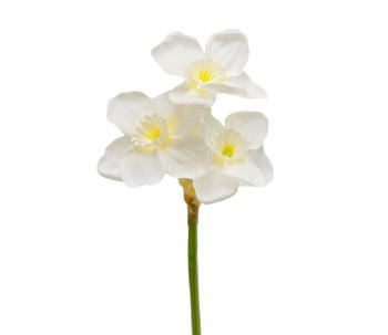 Konstgjord blomma Narciss