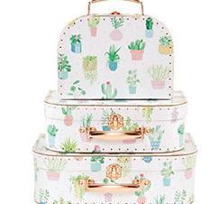 Resväskor kaktus pastell