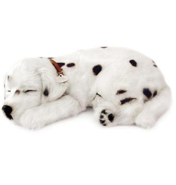 Leksakshund Dalmatiner
