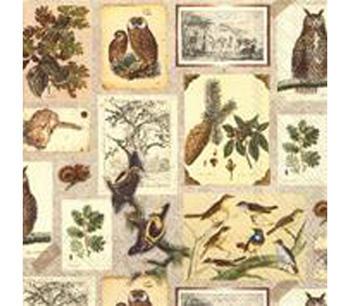 "Servetter  ""Botanical Collage"" botaniskt  collage"